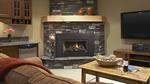 E21 Gas Fireplace Insert